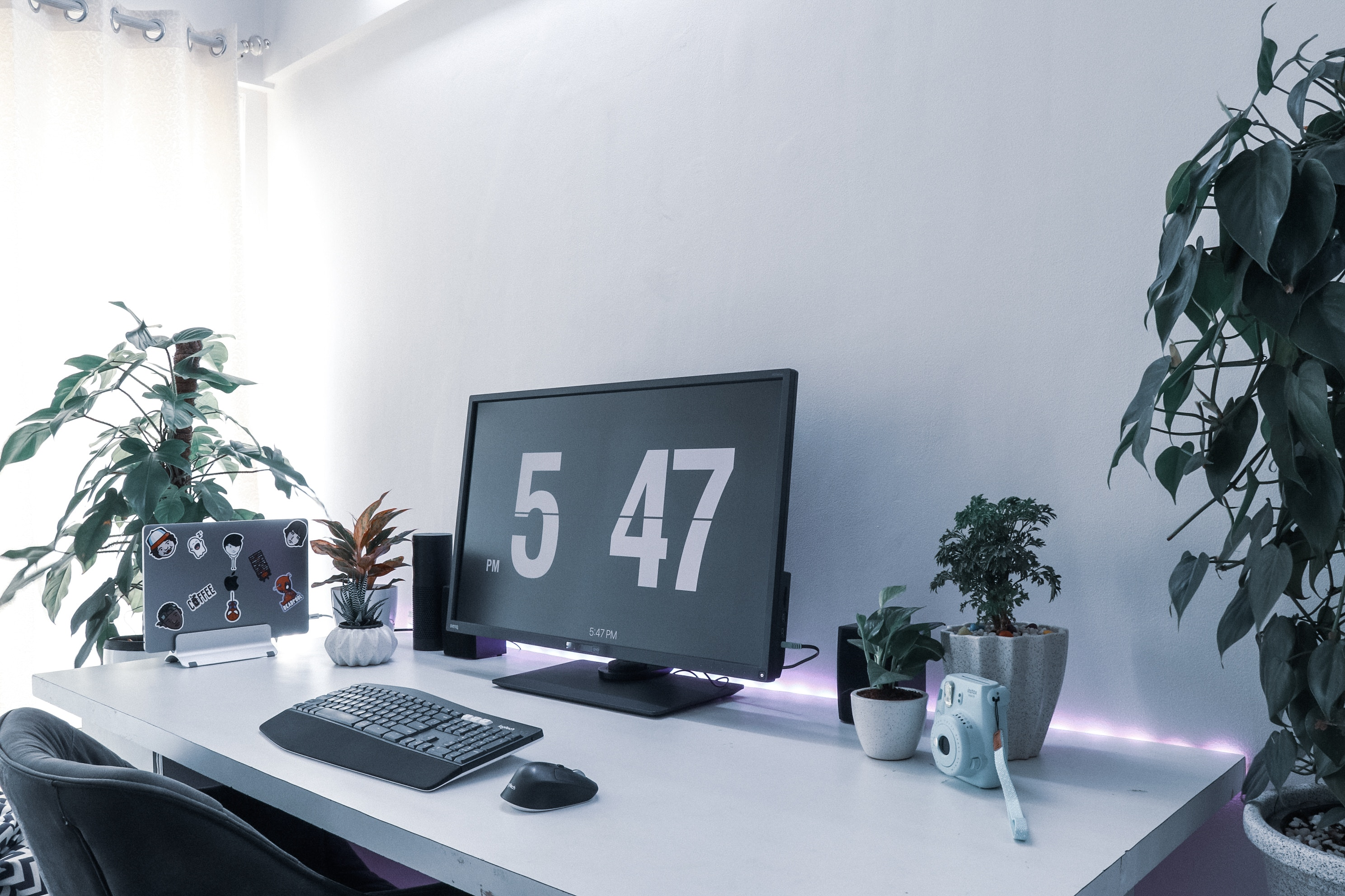 Desk set up with computer screen, keyboard and plants