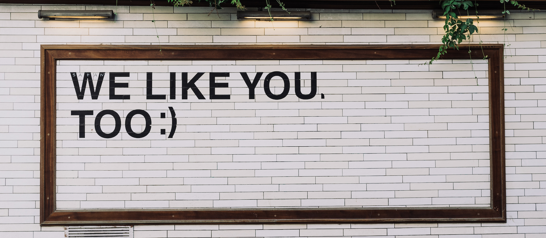Artwork saying 'i like you too'